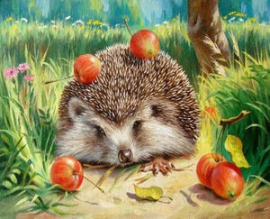 Hedgehog And Fruits