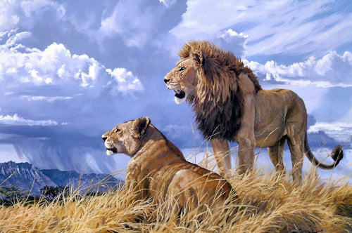 Lion couple painting by number