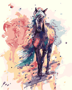 Long Hair Horse Painting By Number Kit