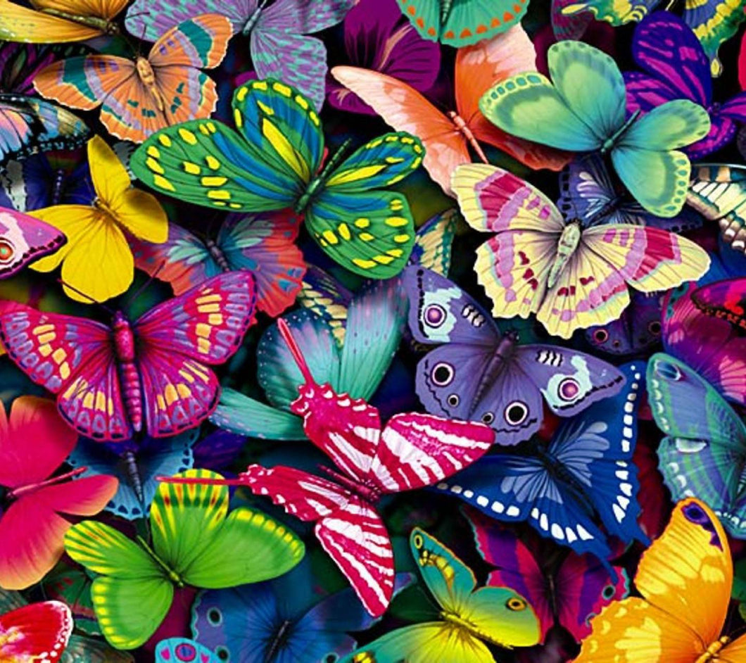 Multi colour butterflies paint by number