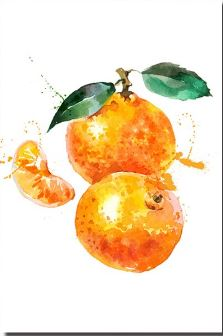 Beautiful Oranges - Paint by Numbers
