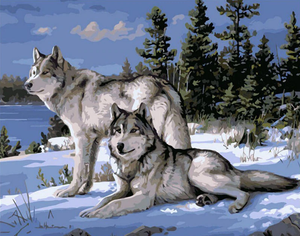Pair Of Wolves In Winter Kit