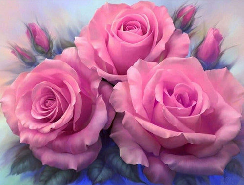 Pink Roses Paint By Numbers