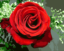 Load image into Gallery viewer, Red Rose DIY painting kit