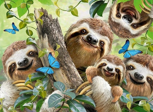 Sloths And Butterflies it