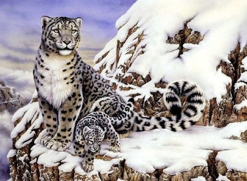Snow Leopard with Cub painting