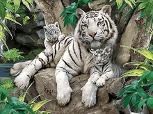 Load image into Gallery viewer, Tiger with cubs painting kit