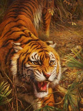 Load image into Gallery viewer, Tiger hunting Paint By Number