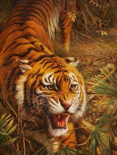 Tiger hunting Paint By Number