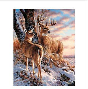 Two Reindeer - Paint by Numbers Kit