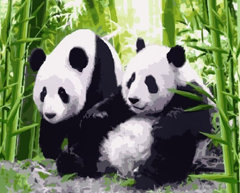 Pandas In Jungle