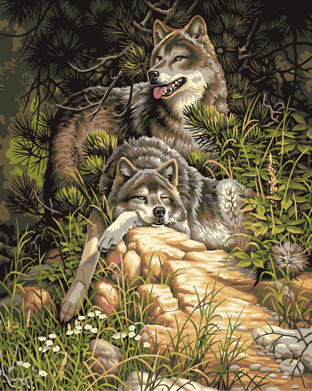 Wolves In Jungle Painting By Numbers Kit