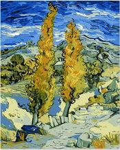 Load image into Gallery viewer, Famous painting Van Gogh - Paint by Numbers Kit