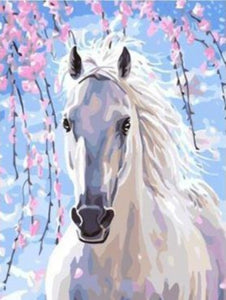 White Horse With Colorful Background