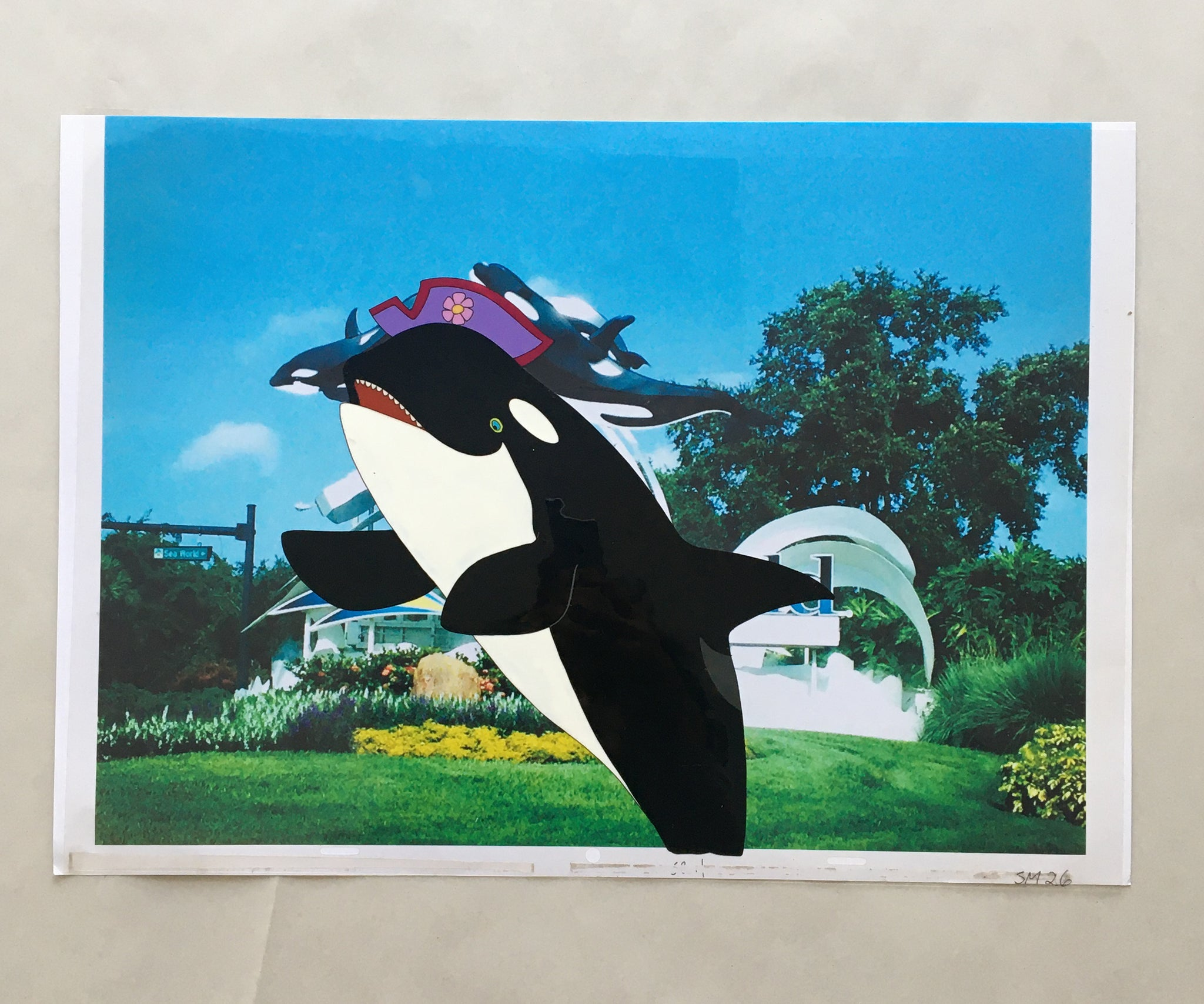 Free Willy Cel With Background (EX0008) - Animation Legends