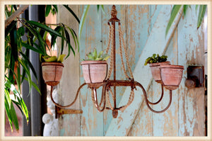 Five Planter Chandelier