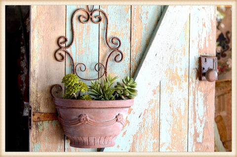 Scrolled Wall Planter