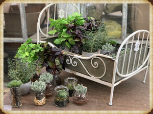 Brown Thumb Special~White Flower Bed Kit!~Pick Up only!