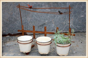Bird On Line Planter