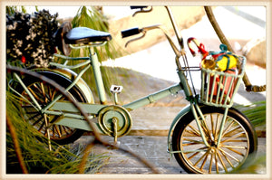 Lg. Blue Bike - Seasonal-Holiday