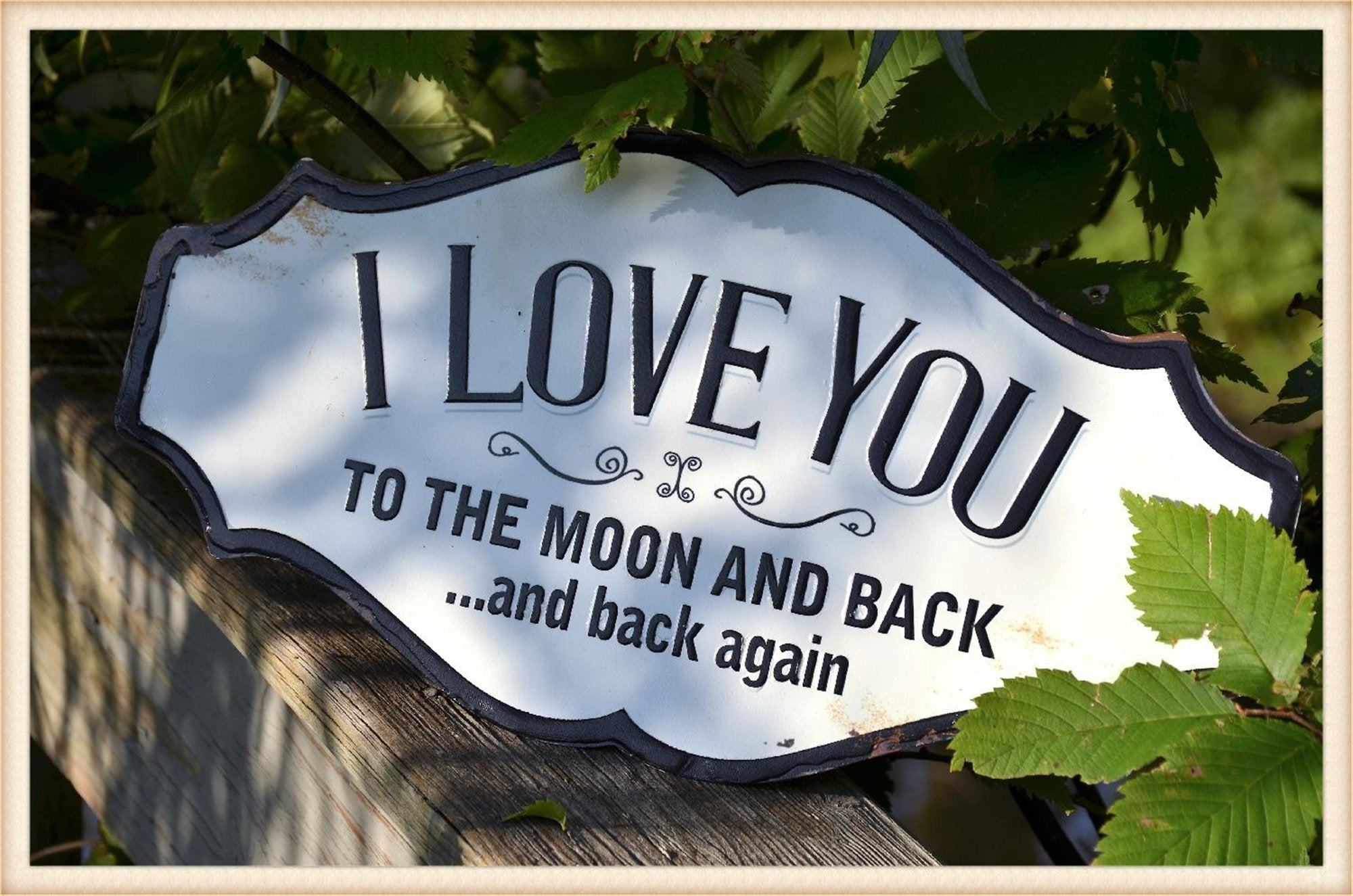 Moon & Back Plaquard