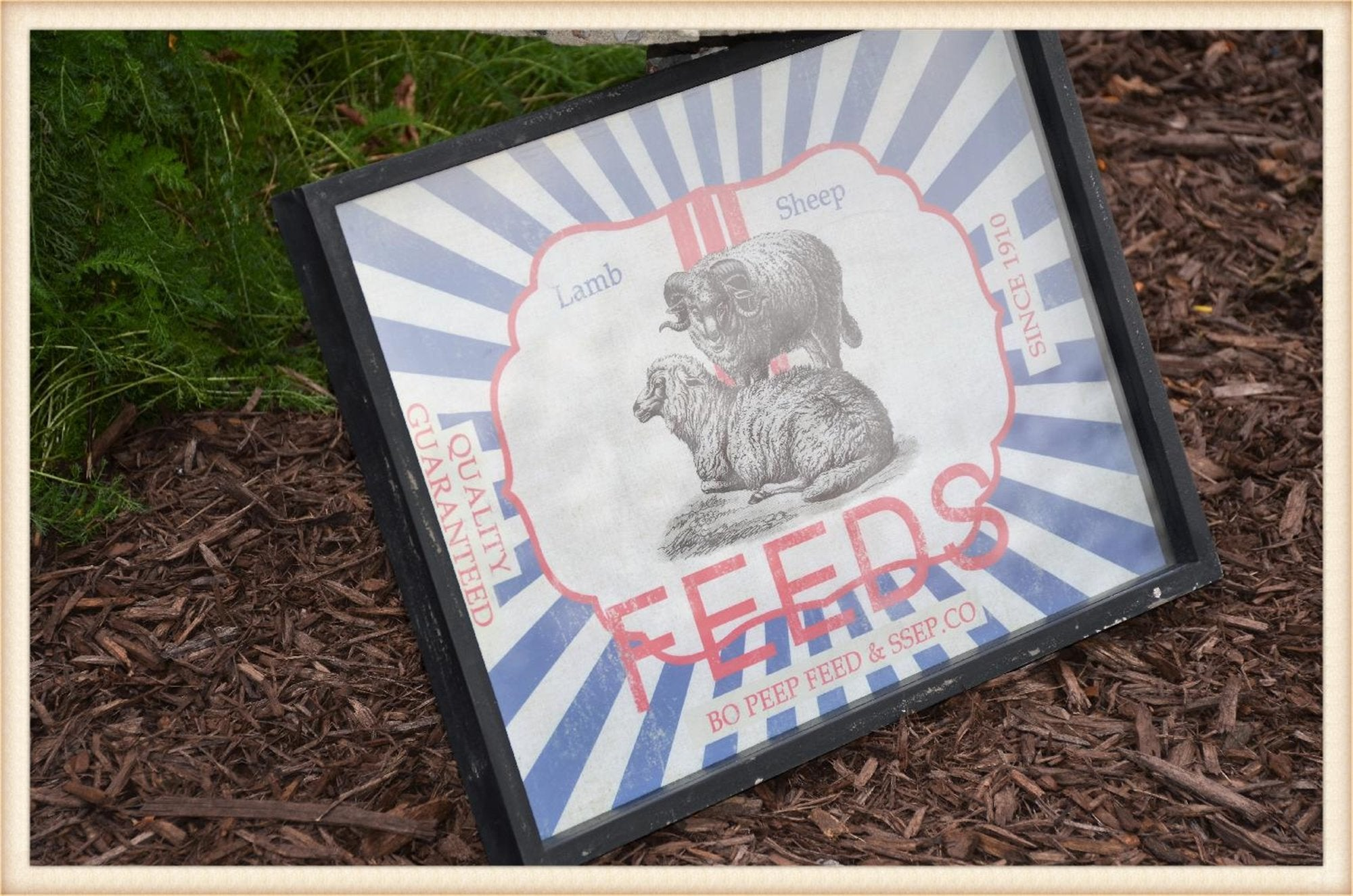 Animal Feeds Shadowbox