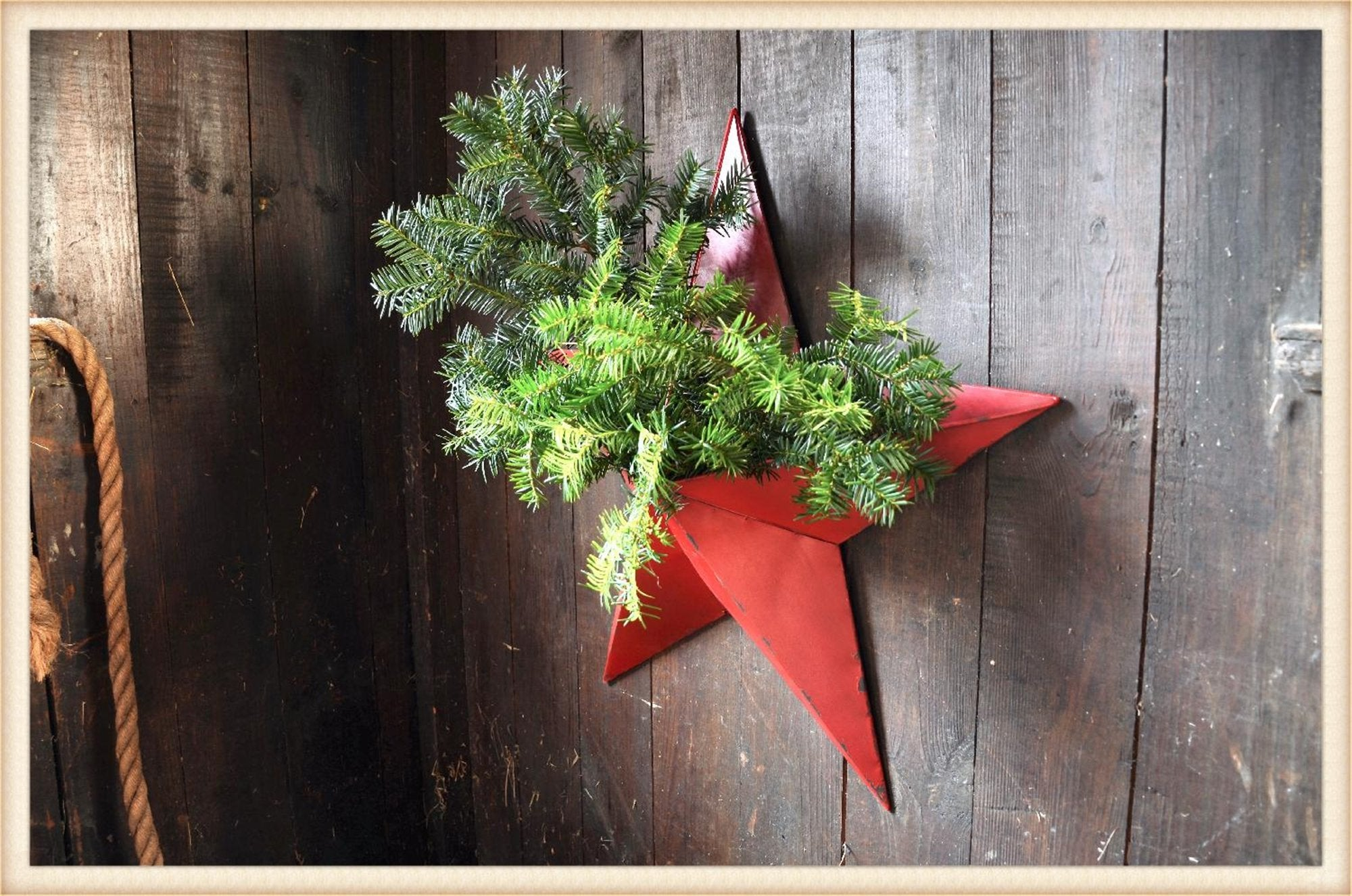 Red Star Planter - Seasonal-Holiday