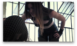 D | The Looney Bag