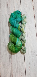 Dye to Order // Snakes on a Skein Sock Set