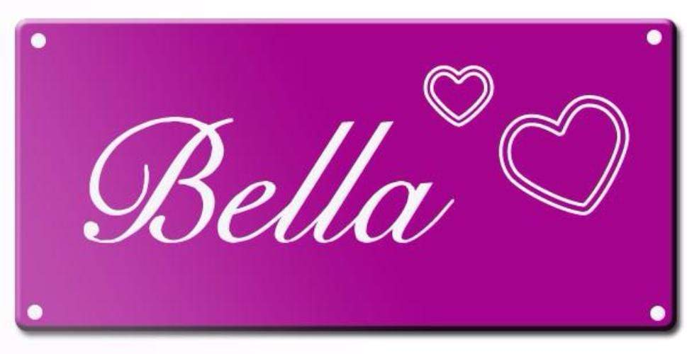 Engraved Pet Name Signs - Medium Pet Tag Pet ID Tags