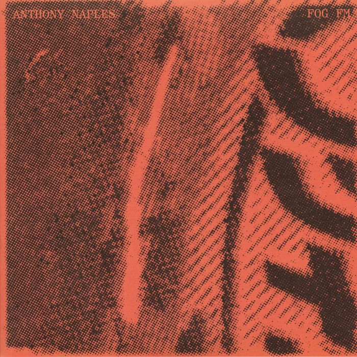 Anthony Naples 'Fog FM' 2LP