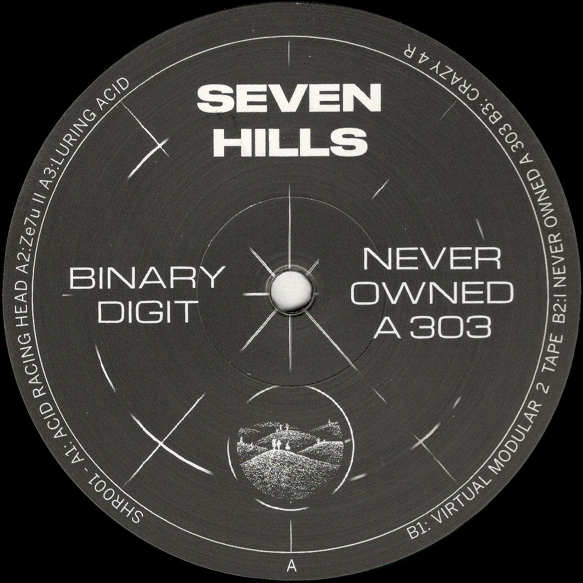Binary Digit 'Never Owned A 303' 12""