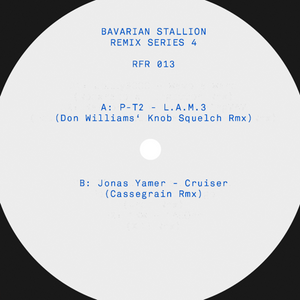 Various Artists 'Bavarian Stallion Remix Series 4'
