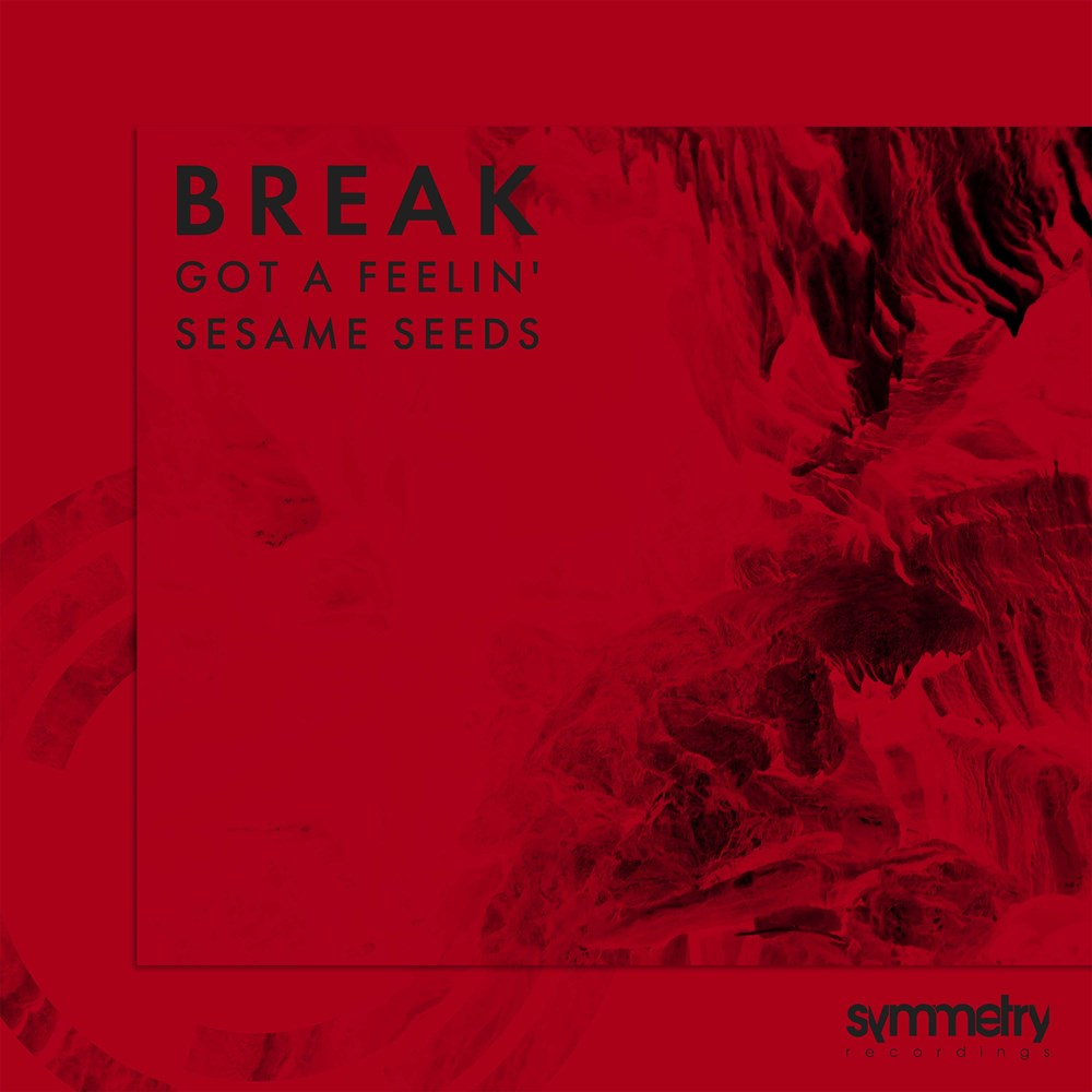 "Break ""Got A Feelin / Sesame Seeds' 12"""