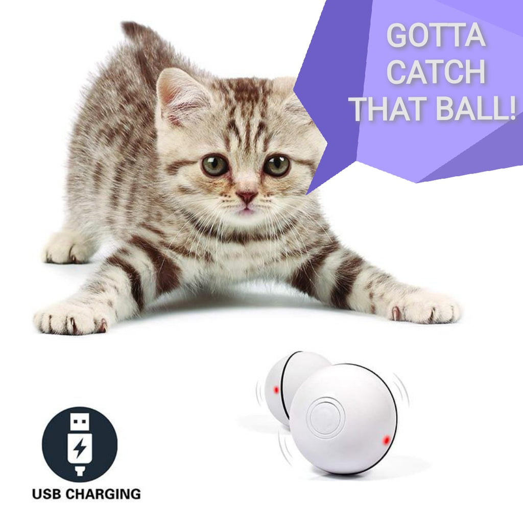 Smart Self Moving Pet Ball - Our Soul Tonic