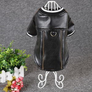 Leather Jacket For Dogs - Our Soul Tonic