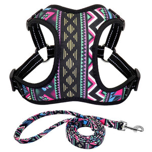 Floral Dog/Cat Harness - Our Soul Tonic