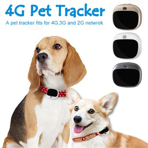 Mini GPS 4G Pet Tracker - Our Soul Tonic