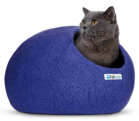 Royal blue cat cave