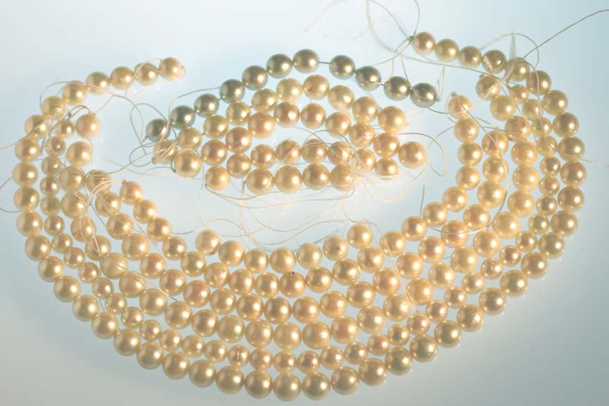 Japanese Akoya Cultured Saltwater White Pearl - Not irradiated or Dyed - Healing Properties Retained