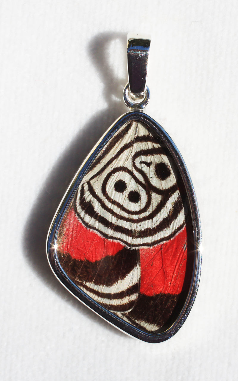 Butterfly Wing Pendant Cramers 88 Butterfly Medium