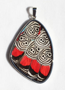 Butterfly Wing Cramers 88 Pendant in XXL