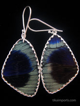 Load image into Gallery viewer, Butterfly Wing Earrings Green and Red Peacock Butterfly Large