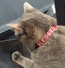"Load image into Gallery viewer, Red or Black ""Blessed"" Rhinestone Crystal Break-Away Kitty Cat Collar with Bell"