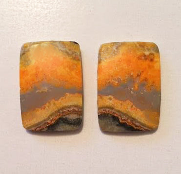 Bumblebee Jasper cabochons matched pair of oblong