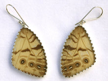 Load image into Gallery viewer, Pearl Blue Morpho Butterfly Wing Earrings Large