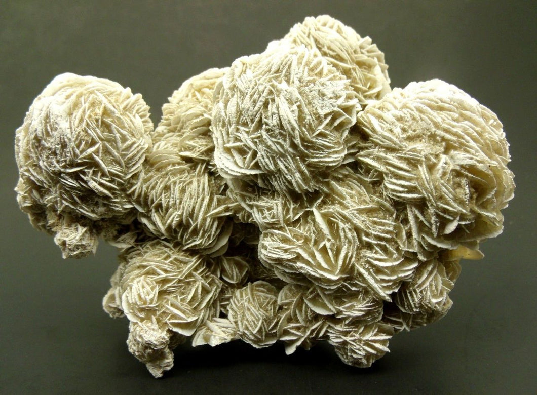 Desert Rose Selenite Specimen - amazing condition