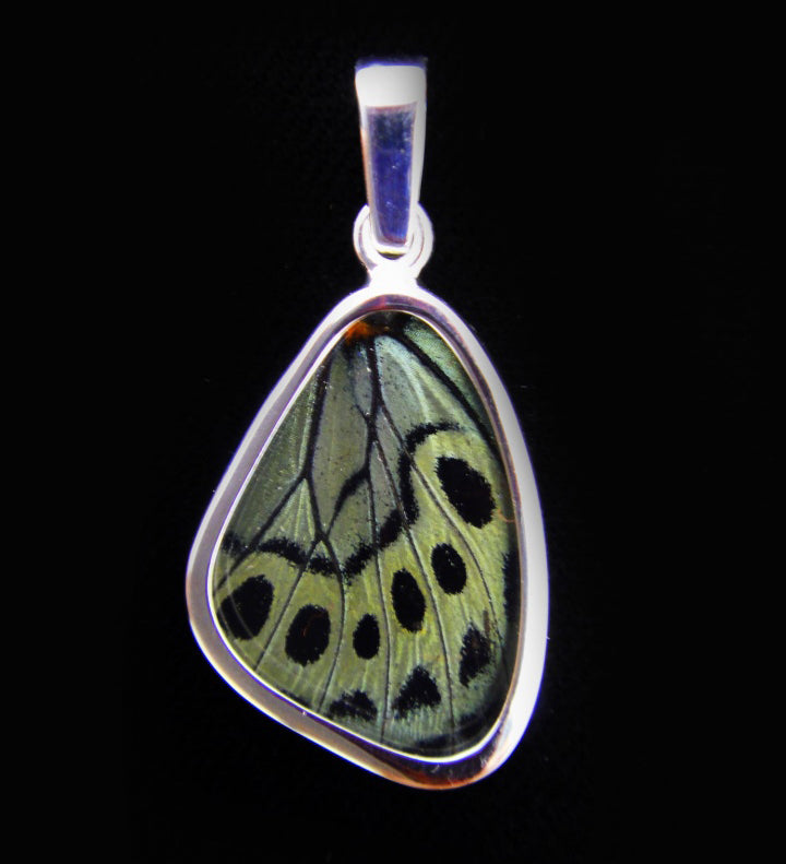 Butterfly Wing Pendant Peacock Butterfly in Small
