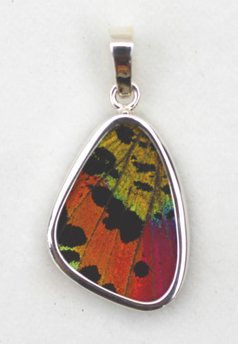 Sunset Moth Butterfly Wing Pendant small size