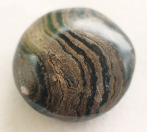 Fossilized Algae aka Stromatolite Palm Stone - The Crystal of Spiritual Leaders